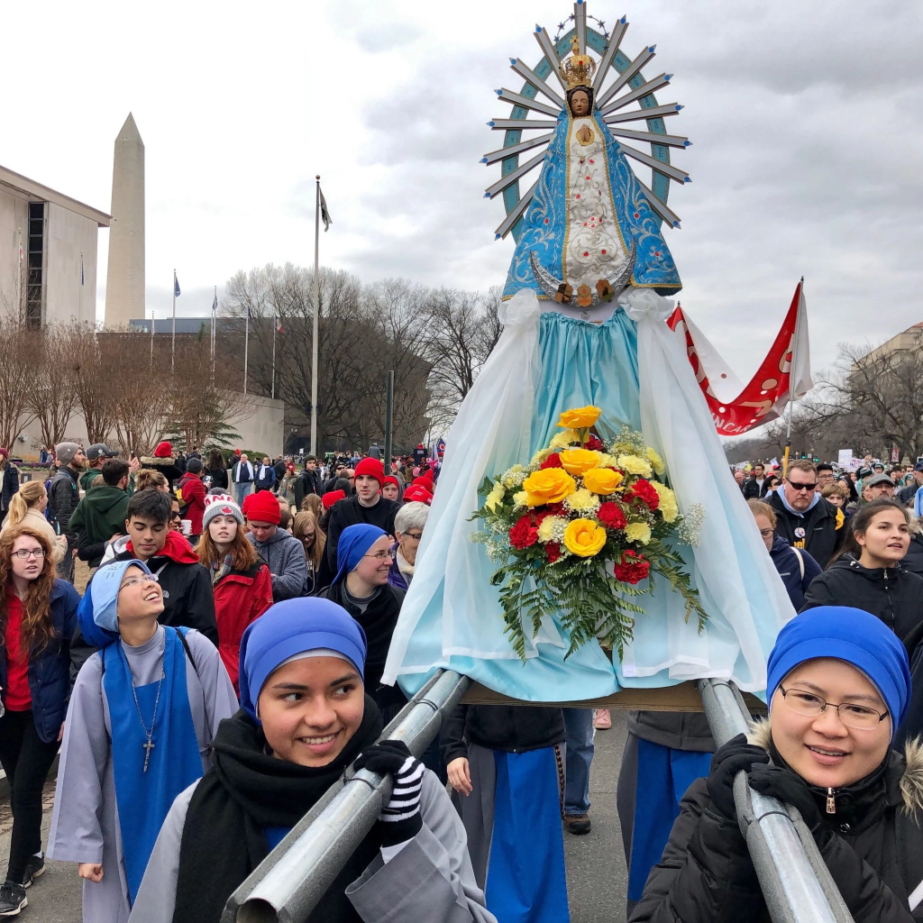 Videos and Images from March for Life in Washington DC